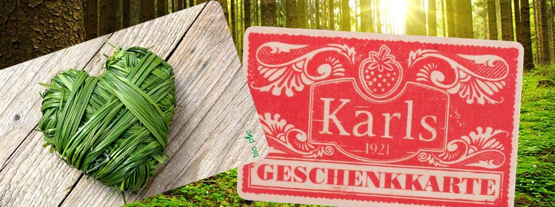 Umweltfreundliche Karten, Holzkarten, BIO PVC Karten