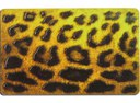 Strukturlack Leopard
